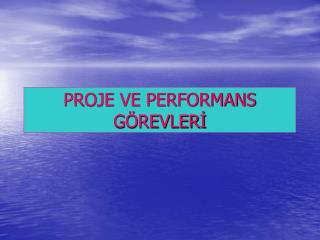 PROJE VE PERFORMANS G REVLERI