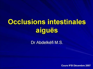 Occlusions intestinales aigu s