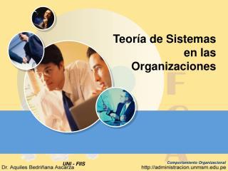 Teor a de Sistemas en las Organizaciones