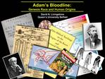 Adam s Bloodline:  Genesis Race and Human Origins