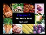 The World Food  Problems
