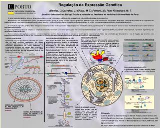 Regula  o da Express o Gen tica  Almeida, I.; Carvalho, J.; Chuva, M. T.; Ferreira, M.; Pena Fernandes, M. T. Servi o e