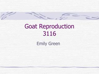 Goat Reproduction 3116