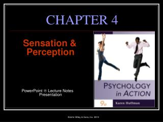 Sensation  Perception     PowerPoint  Lecture Notes Presentation