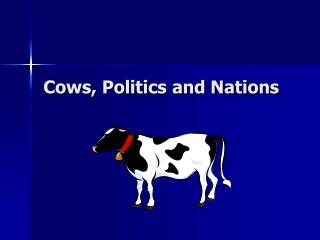 Cows, Politics and Nations