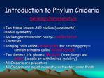 Introduction to Phylum Cnidaria