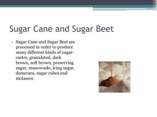 Sugar Cane and Sugar Beet