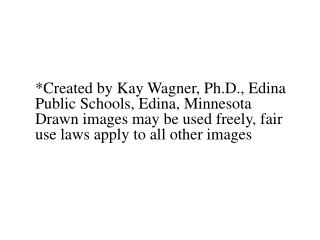 Created by Kay Wagner, Ph.D., Edina Public Schools, Edina, Minnesota Drawn images may be used freely, fair use laws appl