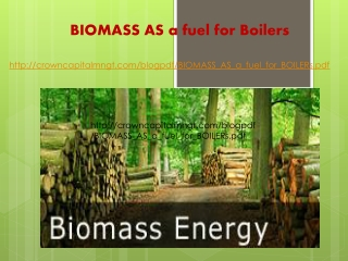 Crown Capital Eco Management, BIOMASS as a fuel for Boilers