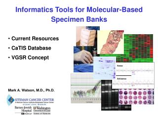 Informatics Tools for Molecular-Based Specimen Banks