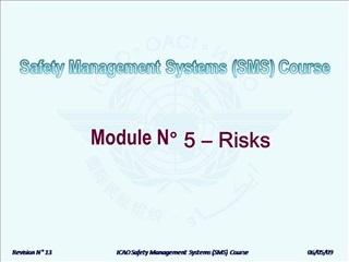 Module N  5   Risks
