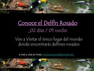 Conoce el Delf n Rosado  02 d as