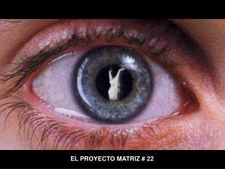 EL PROYECTO MATRIZ  22