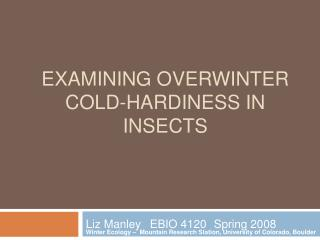 Examining overwinter cold-hardiness in insects
