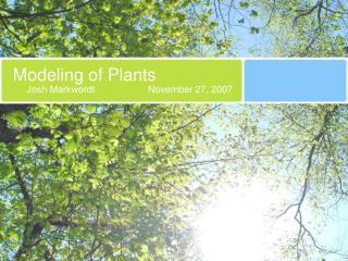 Modeling of Plants