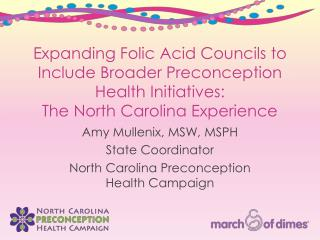 Expanding Folic Acid Councils to Include Broader Preconception Health Initiatives:  The North Carolina Experience