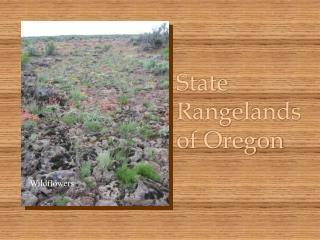 State Rangelands of Oregon