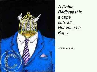 A Robin Redbreast in a cage puts all Heaven in a Rage.     --William Blake