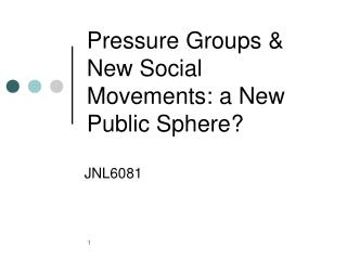 Pressure Groups  New Social Movements: a New Public Sphere