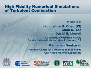 High Fidelity Numerical Simulations of Turbulent Combustion