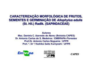 CARACTERIZA  O MORFOL GICA DE FRUTOS, SEMENTES E GERMINA  O DE Allophylus edulis  St. Hil. Radlk. SAPINDACEAE