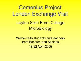 Comenius Project London Exchange Visit