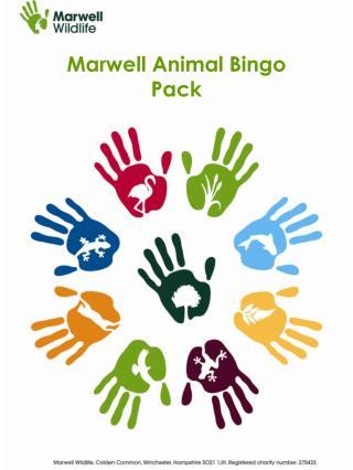 Marwell Animal Bingo  Pack