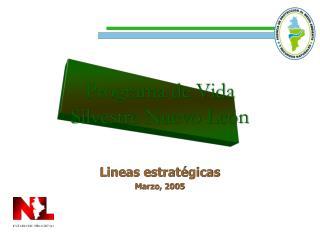 Lineas estrat gicas Marzo, 2005