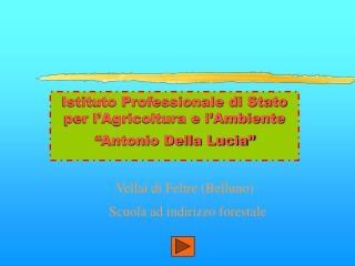 Istituto Professionale di Stato per l Agricoltura e l Ambiente   Antonio Della Lucia