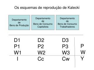 Os esquemas de reprodu  o de Kalecki