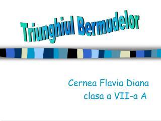Cernea Flavia Diana                 clasa a VII-a A