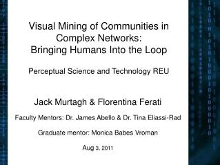 Visual Mining of Communities in Complex Networks:  Bringing Humans Into the Loop   Perceptual Science and Technology REU