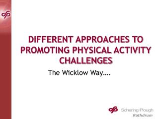 DIFFERENT APPROACHES TO PROMOTING PHYSICAL ACTIVITY CHALLENGES