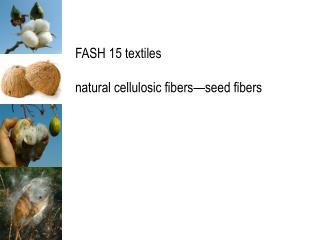 FASH 15 textiles  natural cellulosic fibers seed fibers