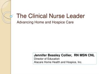 The Clinical Nurse Leader