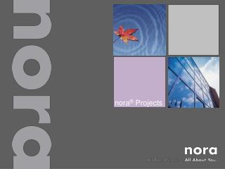 Nora  Projects