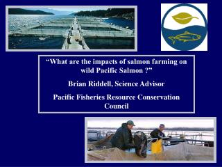 What are the impacts of salmon farming on wild Pacific Salmon   Brian Riddell, Science Advisor Pacific Fisheries Resour
