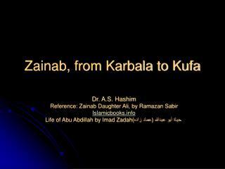 Zainab, from Karbala to Kufa