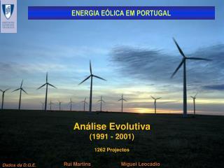 An lise Evolutiva 1991 - 2001