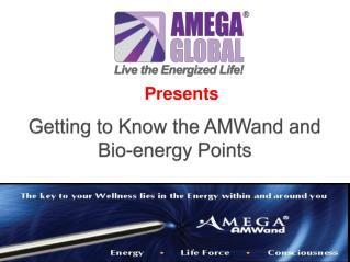 Getting to Know the AMWand and Bio-energy Points