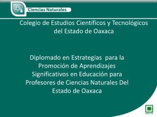 Colegio de Estudios Cient ficos y Tecnol gicos del Estado de Oaxaca