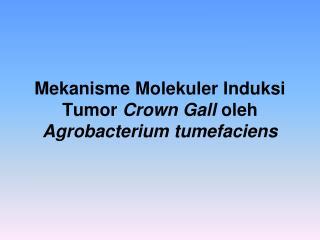 Mekanisme Molekuler Induksi Tumor Crown Gall oleh Agrobacterium tumefaciens