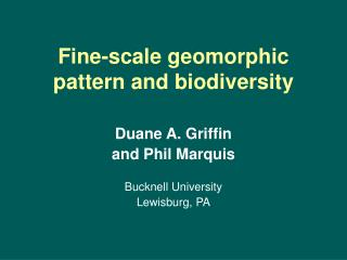 Fine-scale geomorphic pattern and biodiversity