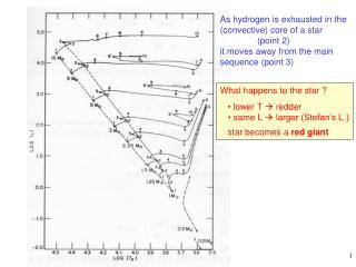 As hydrogen is exhausted in the convective core of a star                point 2 it moves away from the main  sequence p