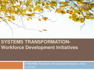 SYSTEMS TRANSFORMATION-Workforce Development Initiatives