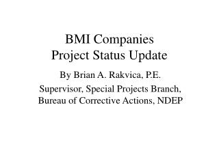 BMI Companies Project Status Update