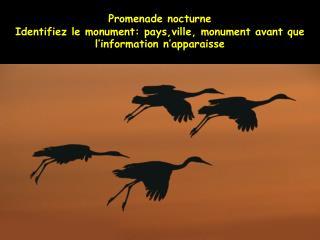Promenade nocturne  Identifiez le monument: pays,ville, monument avant que l information n apparaisse
