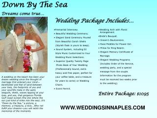 A wedding on the beach has been your dream wedding since the thought of marriage first entered your mind barefooted and