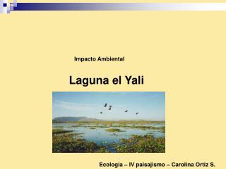 Laguna el Yali