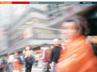 Egy fore jut  v s rl ero Eur ban, 2006